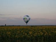 полет на воздушном шаре над подсолнухами