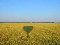 на воздушном шаре на полем с подсолнухами