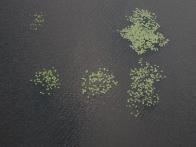 полет на воздушном шаре в Макарове