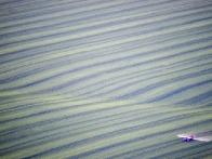 Полет на воздушном шаре в Виннице