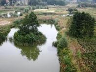 Красивая и чудесная природа Васильвоского района
