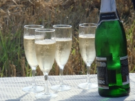 Шампанское для посвящения в воздухоплаватели