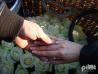 Предложение Руки и Сердца - в корзине воздушного шара!ogosharapilot3